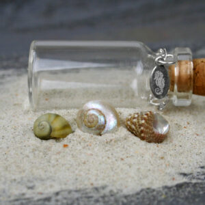 Natural Tiny Seashells Mix