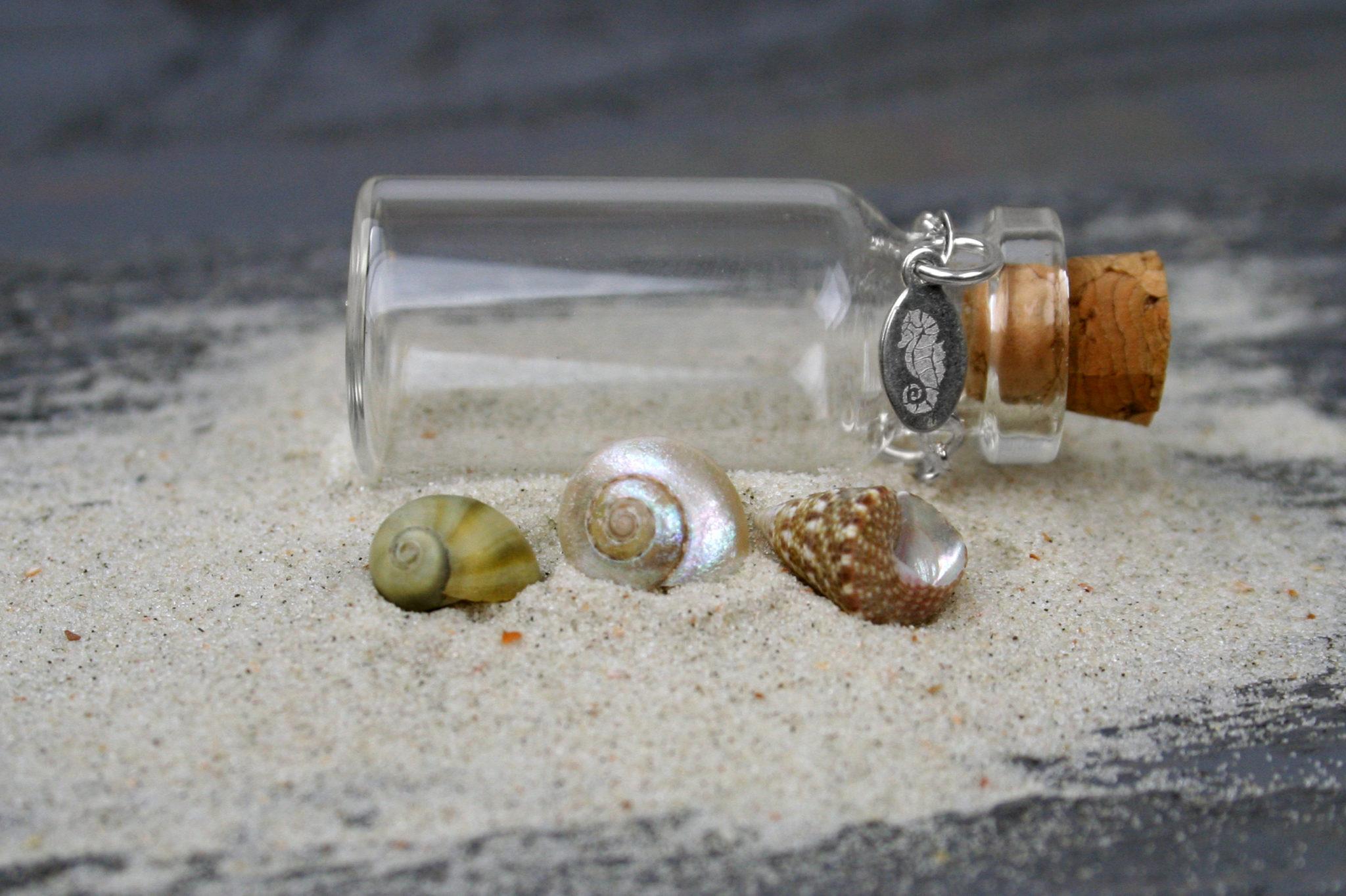 Natural Tiny Seashells Mix